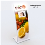 73 in LED Lightbox iPad Kiosk Display